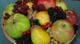 cropped-fruitbasket1.jpg